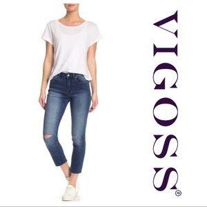 Vigoss